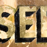 seed_image_003a-sh